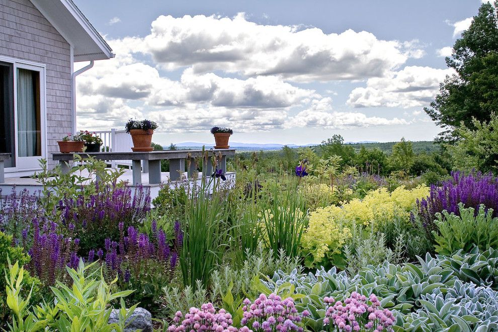 Solaire Silver Spring for a Traditional Landscape with a Purple Flowers and Front Ridge Residence by Matthew Cunningham Landscape Design Llc