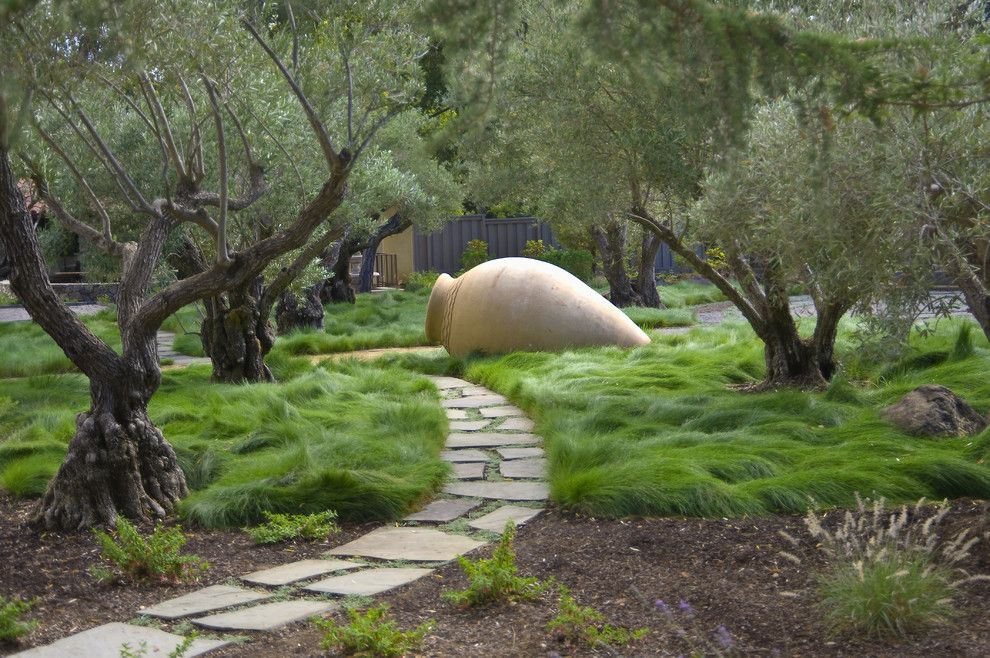 Water Gardens Pleasant Grove for a Contemporary Landscape with a Olive Trees and Saratoga Estate by Kikuchi + Kankel Design Group