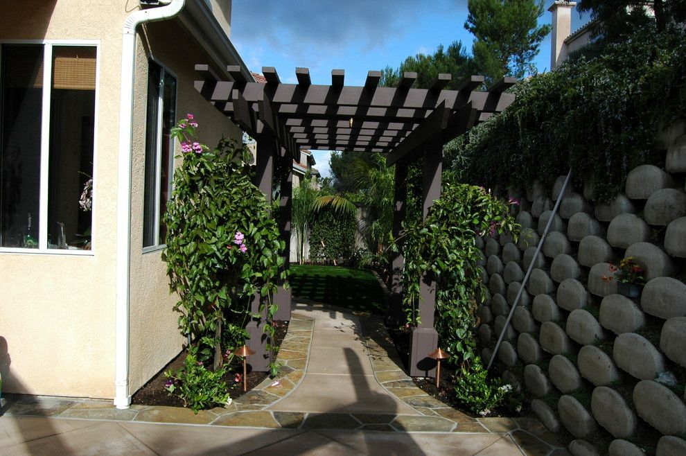 Aaa West Springfield for a Tropical Landscape with a Tropical and Woods Residence by Aaa Landscape Specialists, Inc.  760 295 1980 by Aaa Landscape Specialists, Inc.