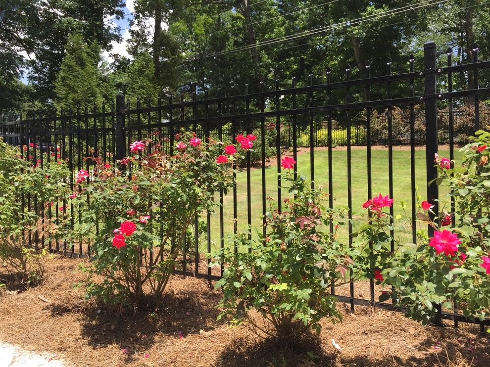 Allied Fence for a Traditional Landscape with a Custom Wrought Iron Gate and Ornamental Fences and Gates by Allied Fence Co