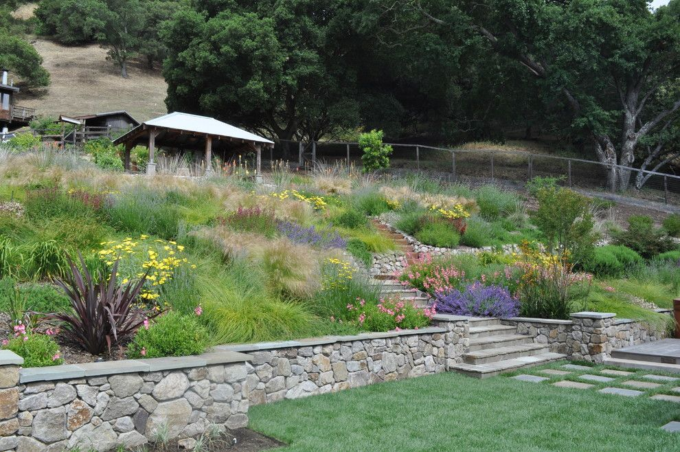 Allside for a Mediterranean Landscape with a Mediterranean and Northern California Regional Hillside by Huettl Landscape Architecture