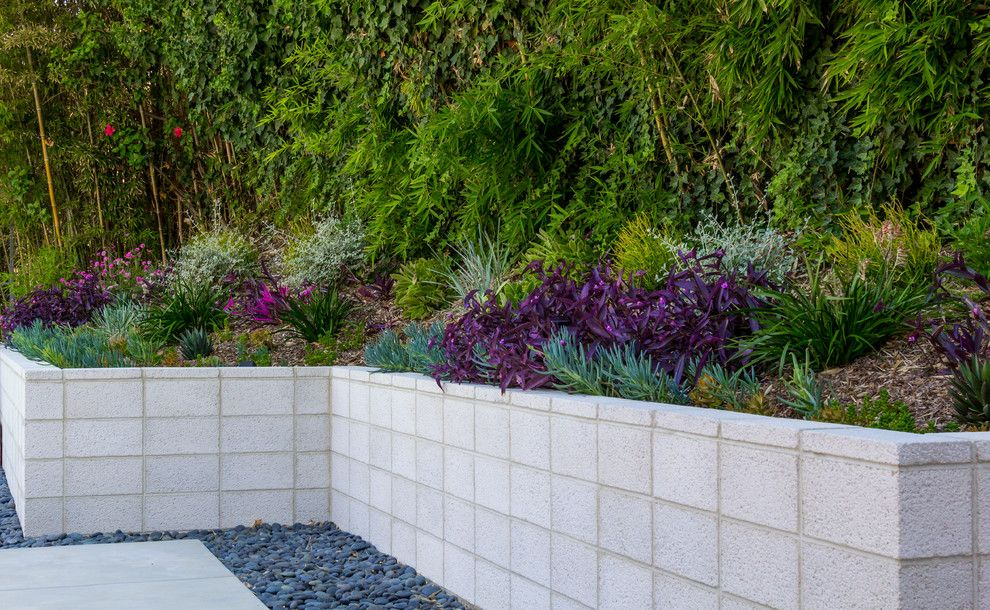 Angelus Block for a Contemporary Landscape with a Concrete Coping and Modern Minimalist by Dp Environments