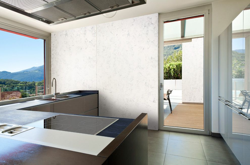Asbestos Floor Tiles for a Transitional Kitchen with a Glass Door and Dupont Corian by Corian® Home Design