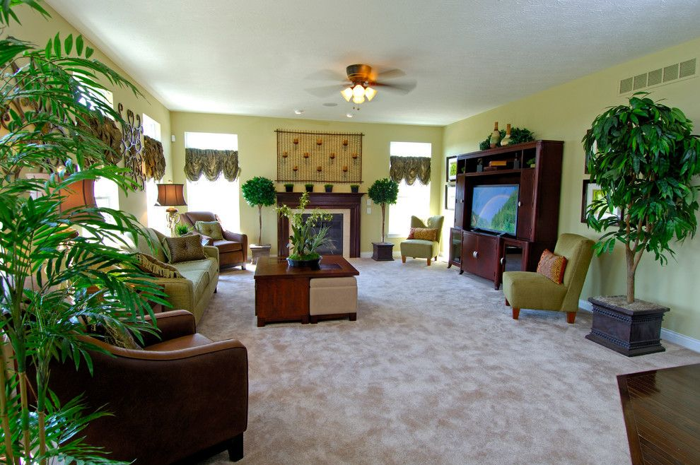 Ashford Homes for a Transitional Living Room with a Transitional and Ashford Homes Ohio by Patti Egan Rivera Designs