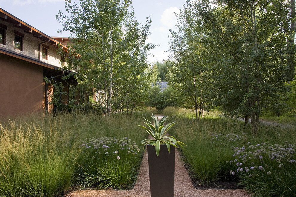 Atwal Eye Care for a Contemporary Landscape with a Low Water and Agave in Tapered Steel Container by the Garden Consultants, Inc.
