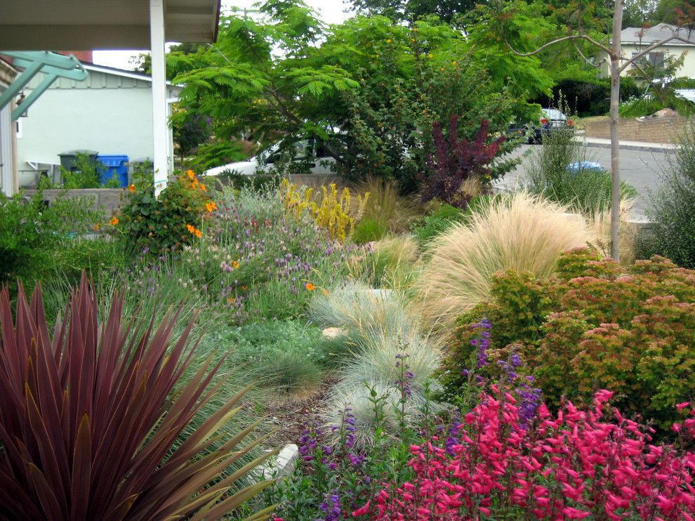 Backpage San Luis Obispo for a Mediterranean Landscape with a San Luis Obispo and Lush San Luis Obispo Mediterranean Corner Plot by Gardens by Gabriel, Inc.