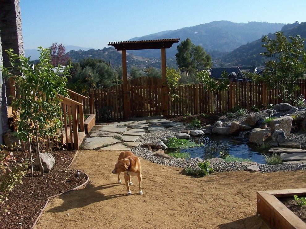 Bella Terra Theater for a Contemporary Spaces with a Garden Water Features and Water Features by Terra Bella Landscaping
