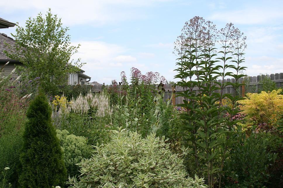 Berns Garden Center for a Contemporary Landscape with a Contemporary and T H E | D E E P | M I D D L E by Benjamin Vogt / Monarch Gardens