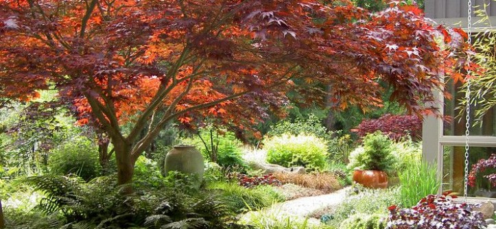 Berns Garden Center for a Traditional Landscape with a Ornamental Grass and Lytle Road - Bainbridge Island by Bliss Garden Design