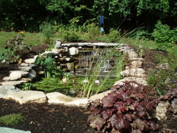 Bloomin Gardens for a  Landscape with a Pond and Landscaping / Our Work by Bloomin Garden Centre