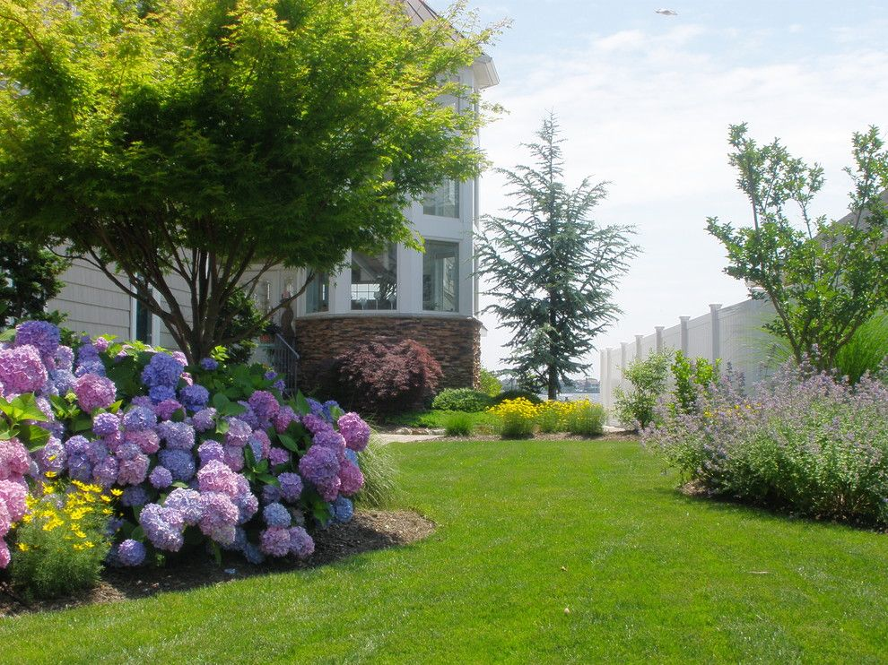 Chinese Fringe Flower for a Traditional Landscape with a Beige Exterior and Waterfront Home by Pdrdesigns, Llc