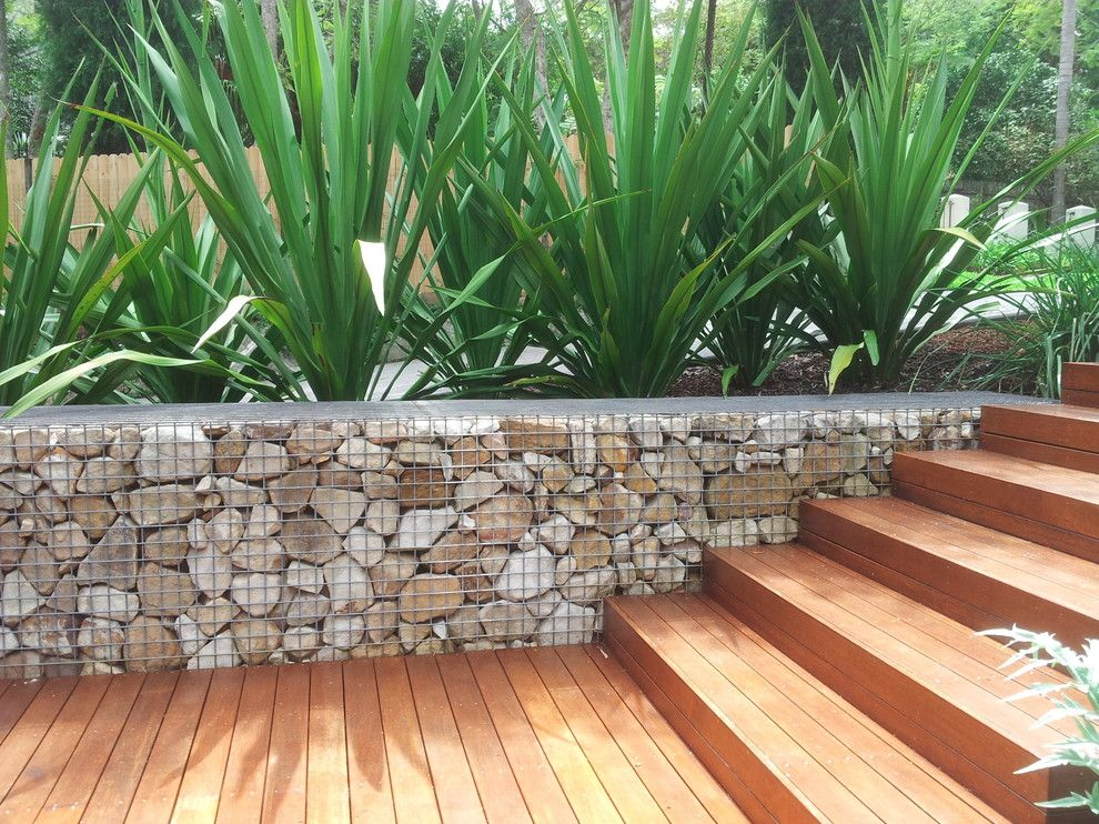 Cinder Block Retaining Wall for a  Spaces with a  and Killara Garden Arrival Courtyard Garden ,Modern Australian Theme by Banksia Design Group Andrew Davies Designer