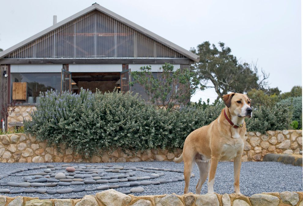Coast Guard Emblem for a Rustic Exterior with a Mediation and My Houzz: Artist Home and Studio Overlooking Kangaroo Island by Jeni Lee
