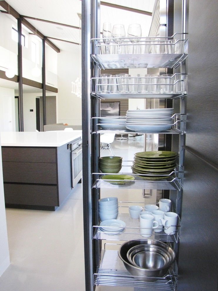 Contra Costa Appliance for a Midcentury Kitchen with a Organization and Houzz Tour: A Labor of Modern Love in Costa Mesa by Tara Bussema   Neat Organization and Design