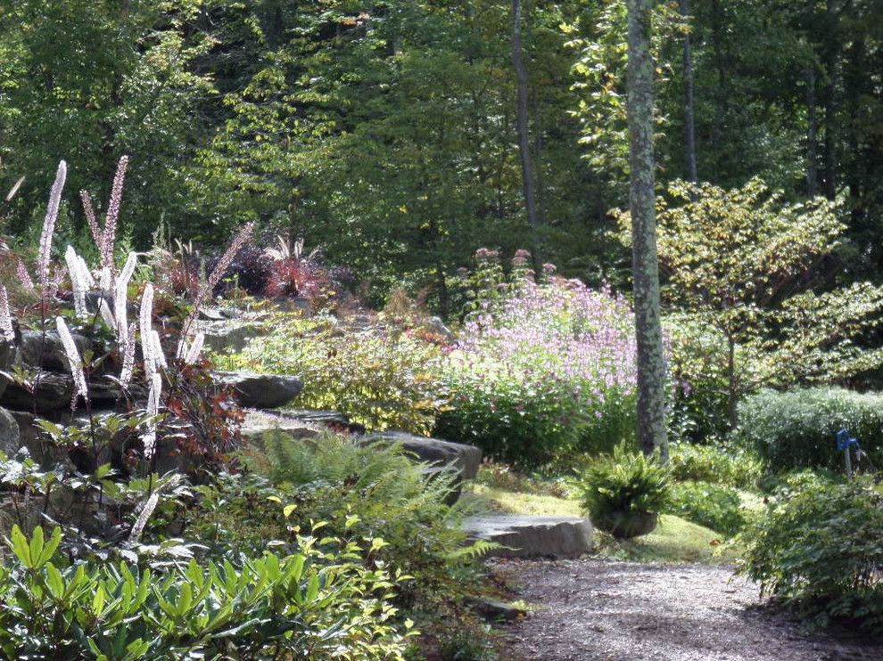 Cornus Racemosa for a Rustic Landscape with a Ferns and Exuberance by Zone4 Landscapes Ltd.