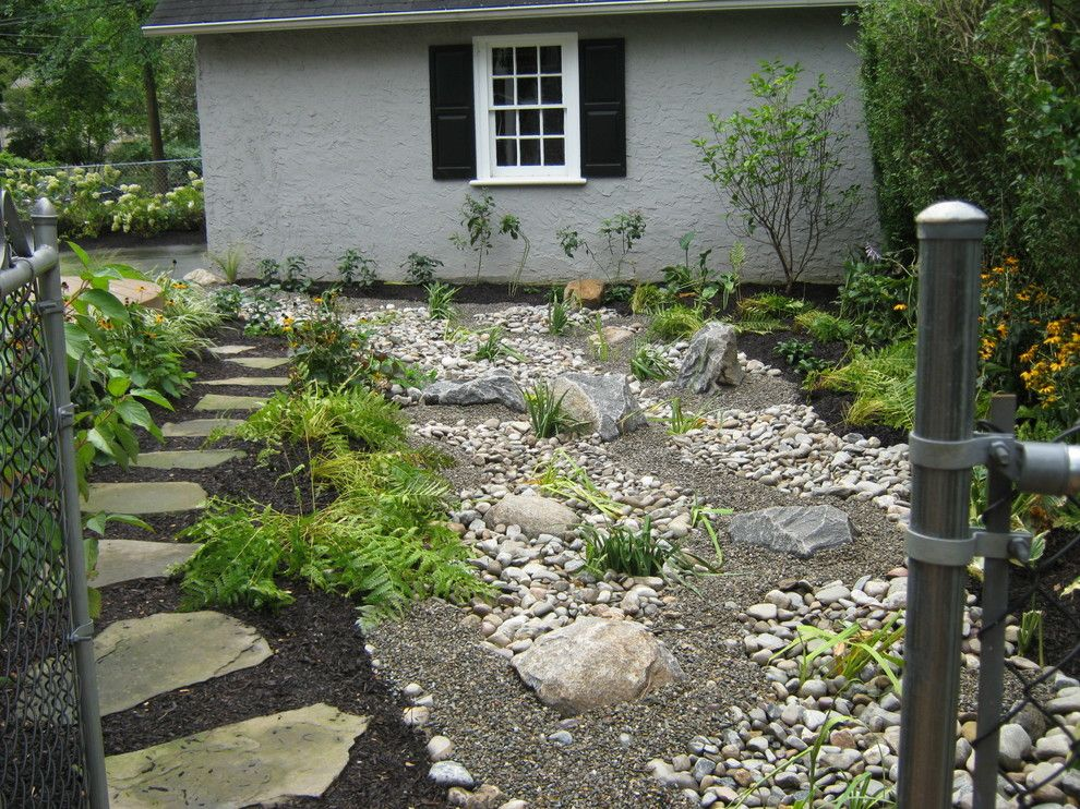 Cornus Sericea for a  Spaces with a Colorful and U2014 Ale: Wayne Rain Garden by Pennsylvania Landscape & Nursery Association