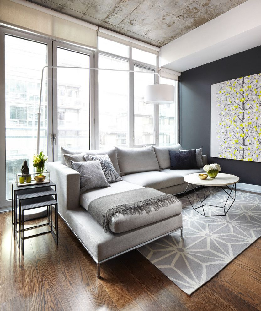 Counch for a Contemporary Living Room with a Gray Couch and Project in Progress by Lisa Petrole Photography