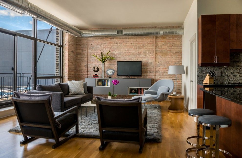 Craigslist Chicago Furniture for a Contemporary Living Room with a Area Rug and West Loop Loft by Kaufman Segal Design