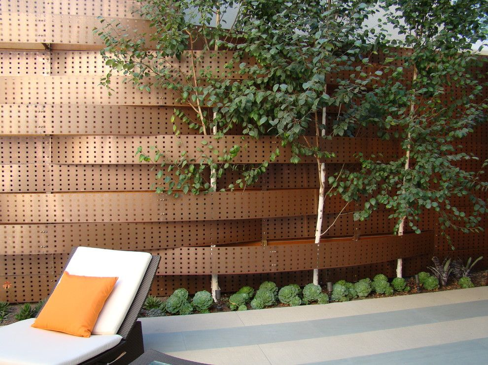 Dedon for a Contemporary Landscape with a Cedar and Pacific Heights by Randy Thueme Design Inc.   Landscape Architecture