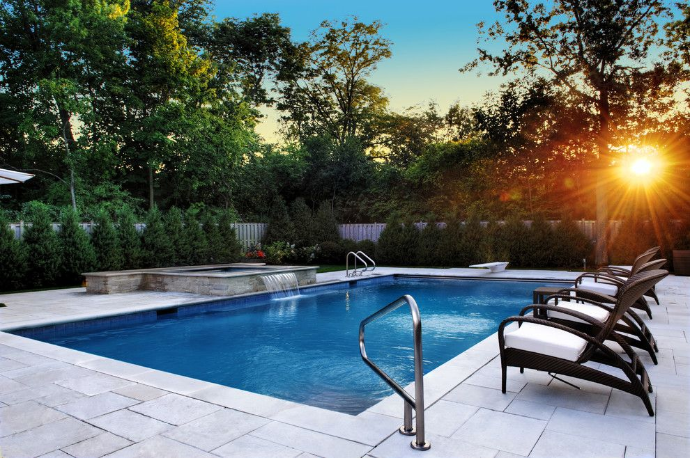 Dedon for a Traditional Pool with a Inground Swimming Pool and Inground Swimming Pool by Platinum Poolcare