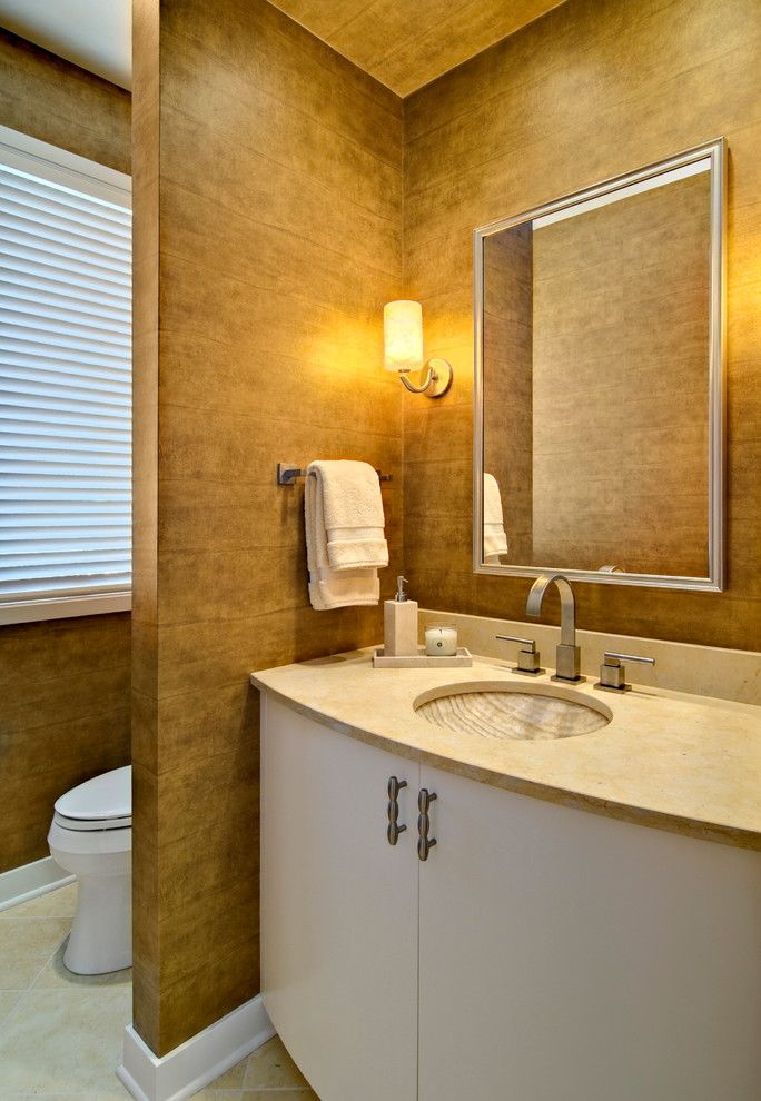 Delta Faucet Warranty for a Transitional Powder Room with a Rectangular Mirror and Eden Prairie Home by Plekkenpol Builders, Inc.