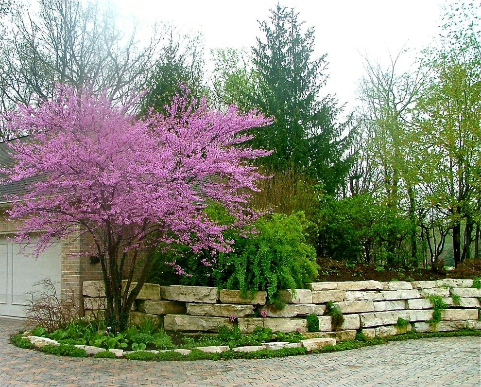 Drakes Landing for a Traditional Landscape with a Ground Cover and Residential Landscape Throughout the Growing Season by the American Gardener, Llc