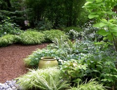 Dutalier for a Contemporary Landscape with a Forest and Lytle Road, Bainbridge Island - Shaded Creek by Bliss Garden Design