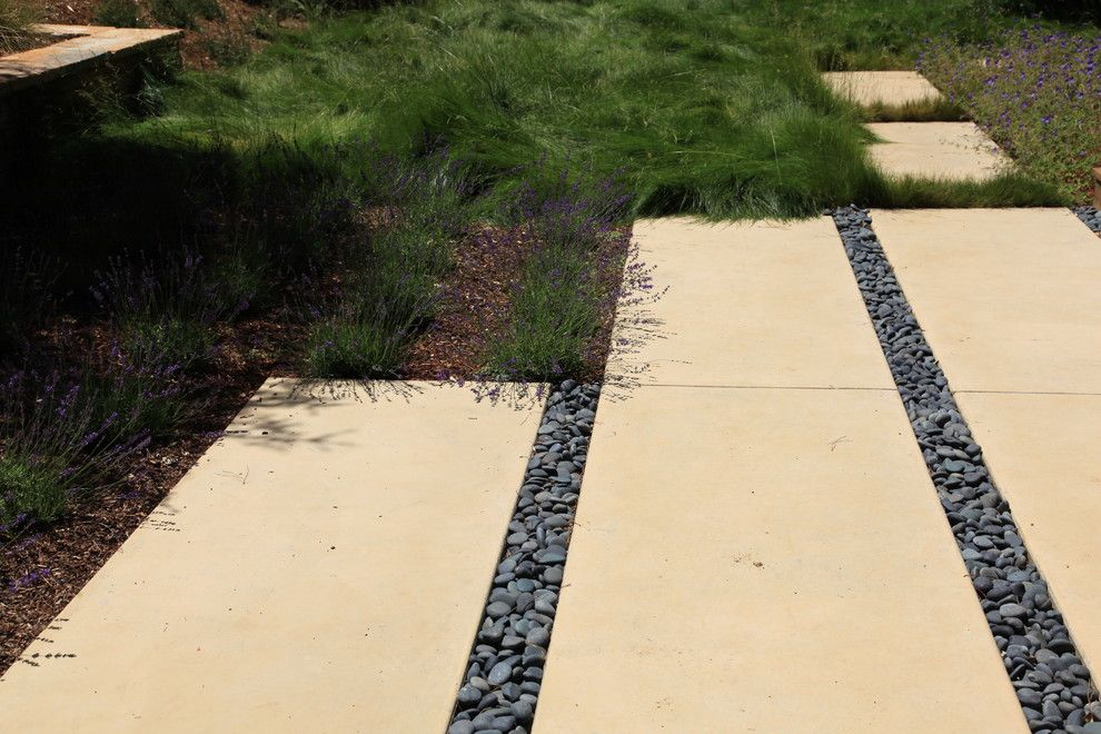 Electric Company Cast for a Mediterranean Landscape with a Groundcover and Portola Valley Estate by the Garden Route Company
