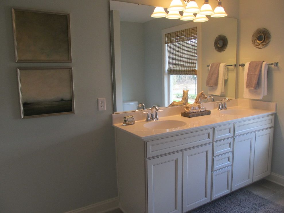 Embellishing for a Traditional Bathroom with a Traditional and Carnes Crossroads Model Home by Embellish Interiors