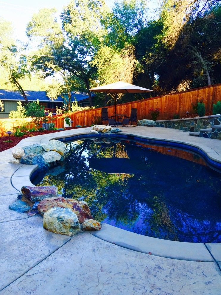 Evans Landscaping for a Eclectic Spaces with a Natural Pool and Post Renovation   Twin Oaks Road by Debby Evans Garden Design