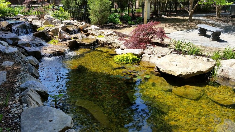 Evans Landscaping for a  Spaces with a Evans Ga and Koi Pond with Waterfalls and Patio / Walkway in Blythewood Sc by Mccormick Landscaping / Aquatic Solutions