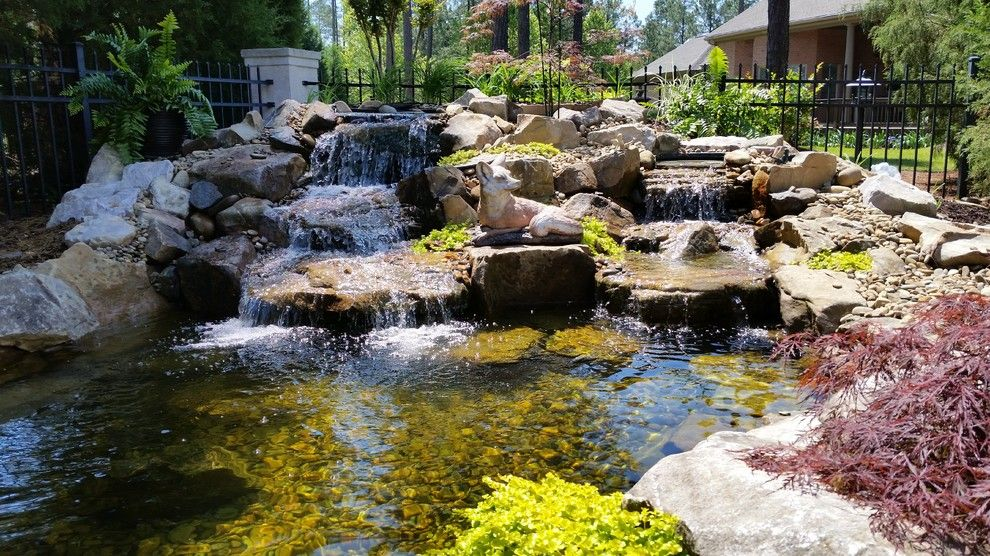Evans Landscaping for a  Spaces with a Walkway and Koi Pond with Waterfalls and Patio / Walkway in Blythewood Sc by Mccormick Landscaping / Aquatic Solutions