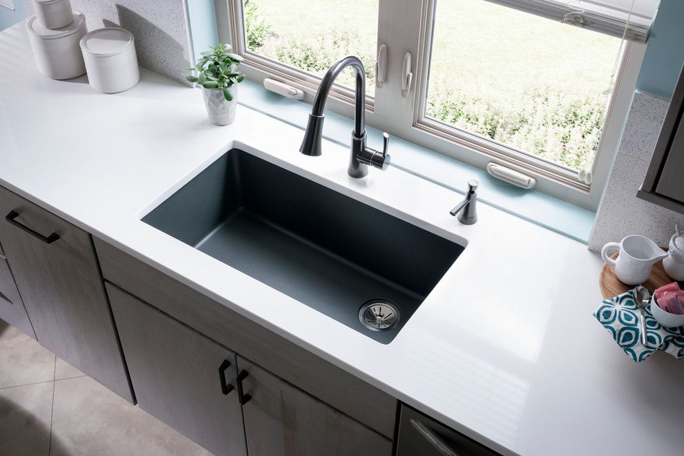 Female Cat Spraying for a Contemporary Spaces with a Contemporary and Elkay Sinks and Faucets by Elkay Sinks and Faucets