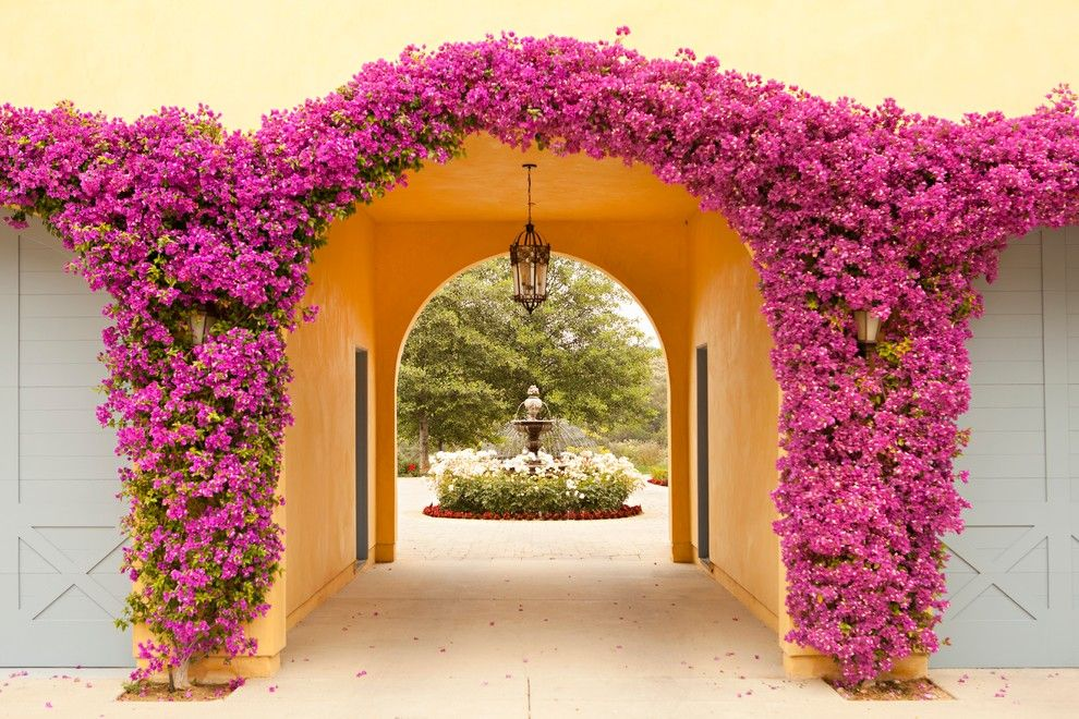 Flowerama for a Mediterranean Landscape with a Archway and Summit by Biglin Architectural Group