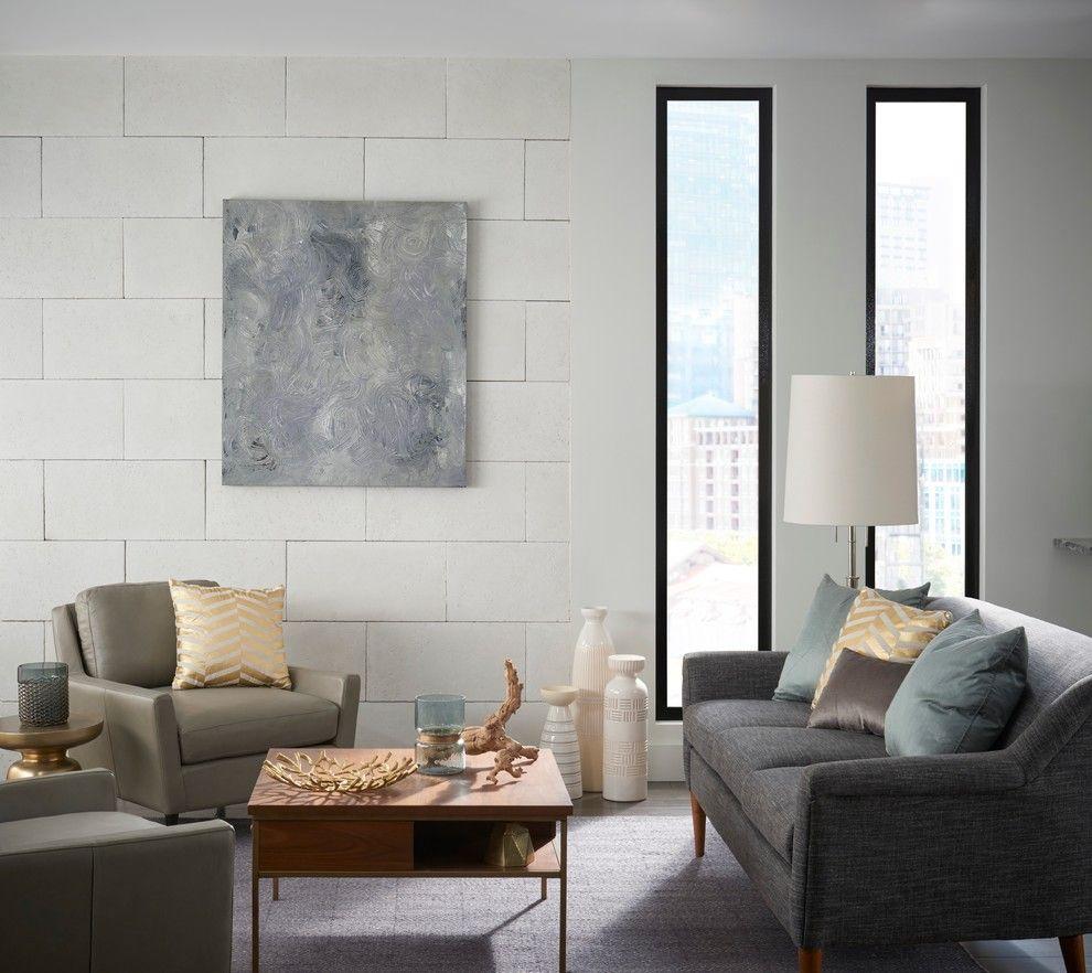 Four Paws and a Tail for a Contemporary Living Room with a Contemporary and Eldorado Stone 2017 by Eldorado Stone