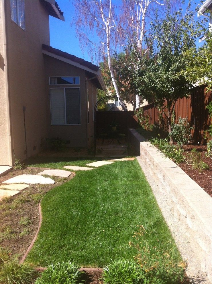 Four Paws and a Tail for a Eclectic Spaces with a Kangaroo Paw and Private Garden From Lawn Reduction by Kl Designs Residential Landscape Planning Llc