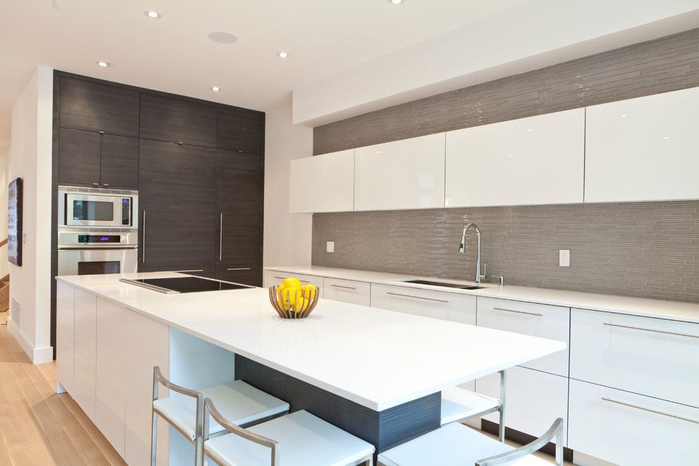 Fruit Flies in Kitchen for a Modern Kitchen with a Modern Kitchen and Modernist House by Biglarkinyan Design Planning Inc.