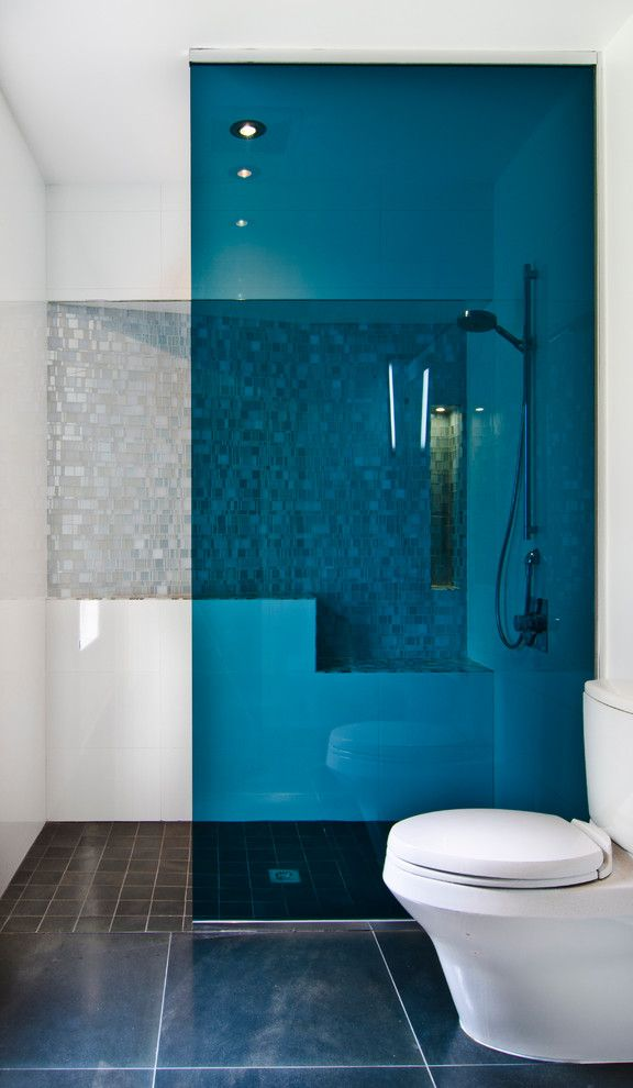 Glassed for a Contemporary Bathroom with a Blue Shower Partition and Goldeneye by Reader & Swartz Architects, P.c.