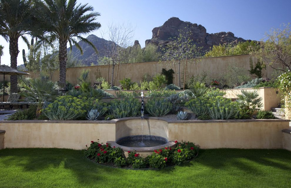 Gopher Plant for a Mediterranean Landscape with a Cactus and Runnel Fountain by Exteriors by Chad Robert