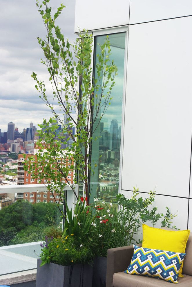 Grand Hyatt Nyc for a Modern Landscape with a Container Garden and Grand Army Plaza Rooftop Garden Ii by Staghorn Nyc