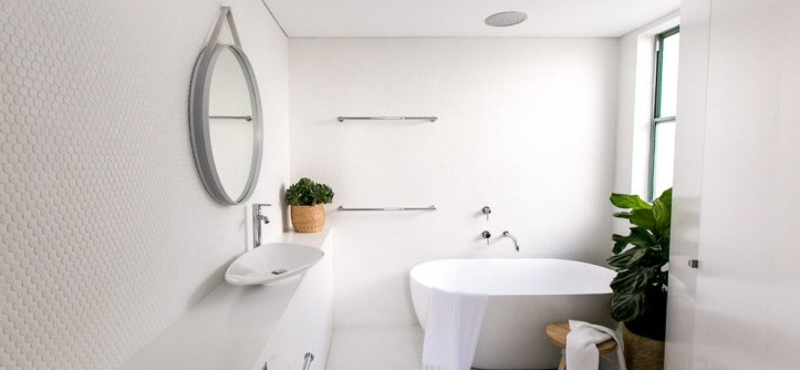 Green Thumb Ventura for a Contemporary Bathroom with a Coastal and Manly Penthouse by C+M Studio