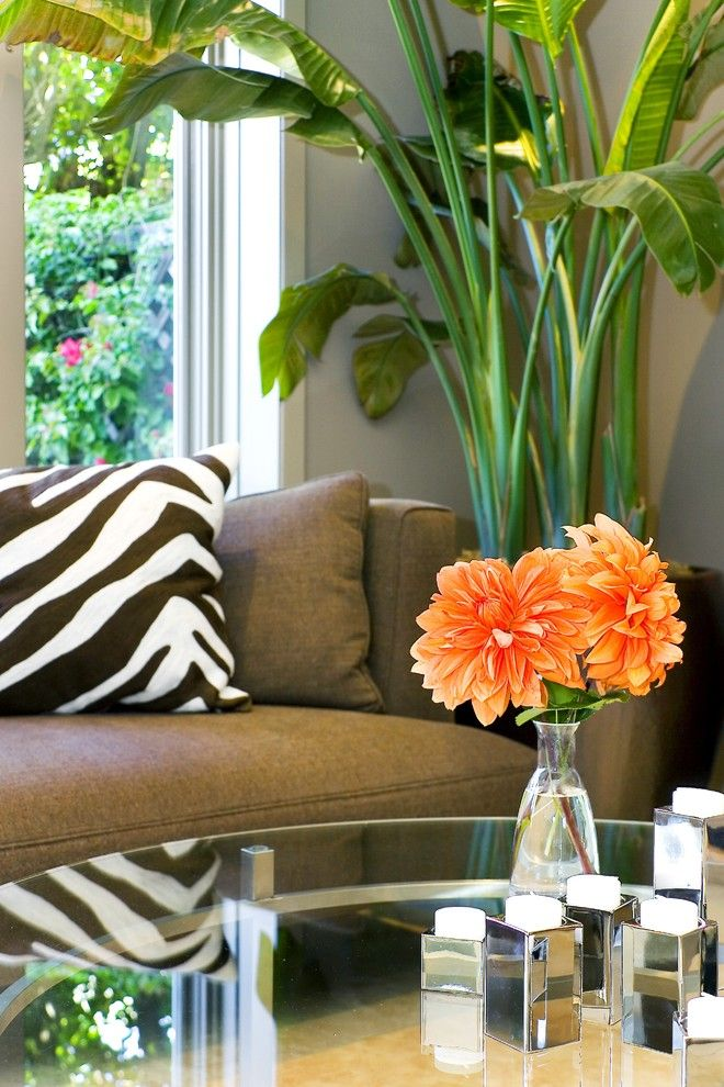 Green Thumb Ventura for a Contemporary Family Room with a Throw Pillows and Amoroso Design by Amoroso Design
