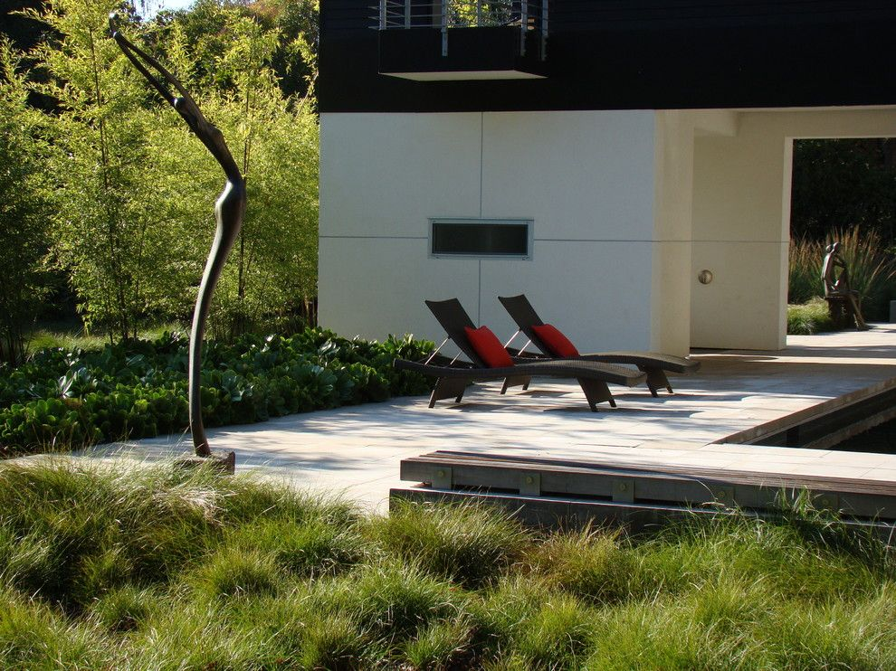 Hilliard Lawn and Garden for a Contemporary Landscape with a Patio Furniture and Palo Alto by Randy Thueme Design Inc.   Landscape Architecture