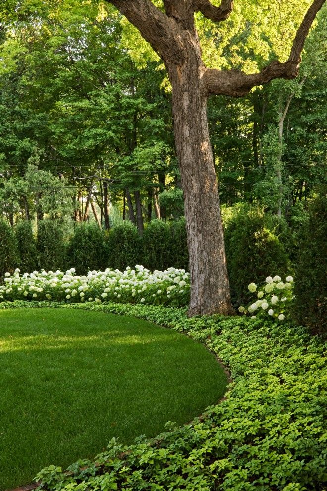Hilton Garden Inn Windsor Ct for a Traditional Landscape with a Planted Border and Windsor Companies by Windsor Companies