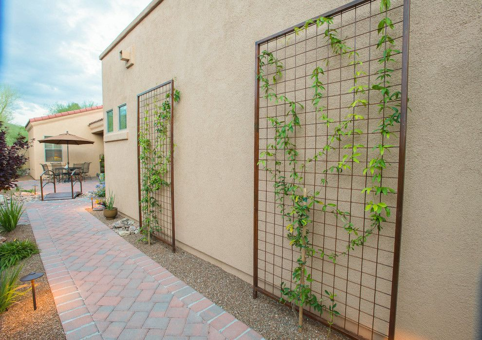 Hop Trellis for a Southwestern Landscape with a Ground Lights and Transformed Tucson Courtyard by Santa Rita Landscaping, Inc.