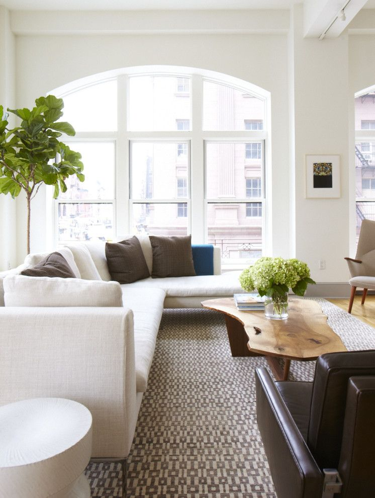 How to Clean Couch Cushions for a Modern Living Room with a Leather Chair and Modern Loft Project by Sasha Lanka