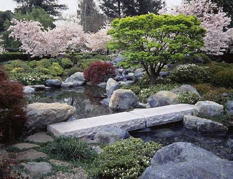 How to Dry Hydrangeas for a Asian Landscape with a Asian and Ron Herman Landscape Architect by Ron Herman Landscape Architect
