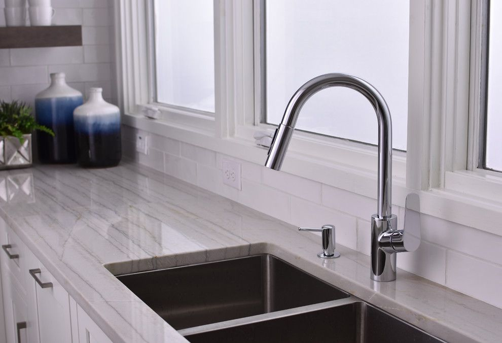 How to Fix Garbage Disposal for a Modern Kitchen with a Double Sink and Hansgrohe by Hansgrohe Usa