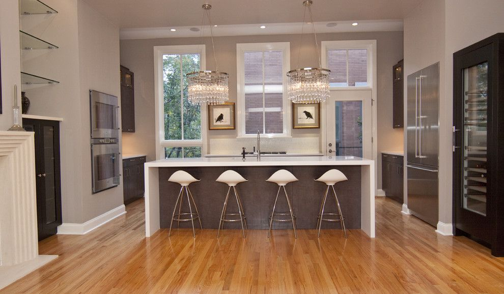 How to Get Rid of Ants in Kitchen for a Contemporary Kitchen with a Wine Fridge and Kitchen Opens to Great Room by Neff of Chicago Custom Cabinetry and Design Studio