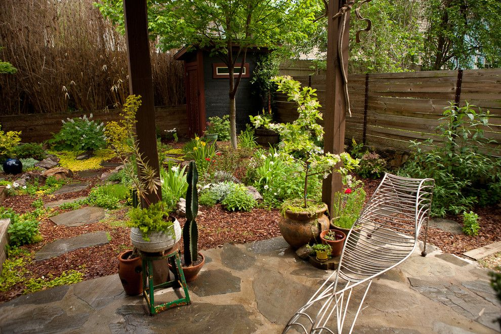 How to Get Rid of Cluster Flies for a Asian Landscape with a Woodland Garden and Contemporary Eclectic Japanese Inspired Garden by Tim Smith Garden Design